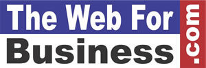 The Web For Business.com - Website Development, Online Marketing & Strategy